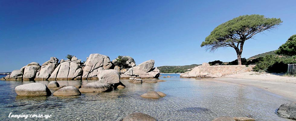 Camping Corse